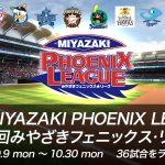 宮崎フェニックスリーグ中継2017|テレビ・ネット放送一覧と【無料】で見る方法
