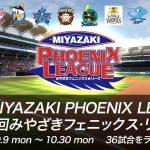 宮崎フェニックスリーグ2017|参加選手ガイド!全12球団の出場メンバー